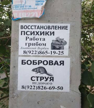 https://forumupload.ru/uploads/0019/3a/78/14/t123403.jpg