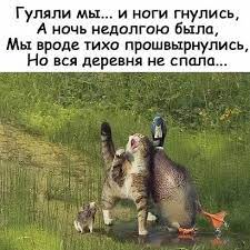 https://forumupload.ru/uploads/0019/3c/8c/1019/160367.jpg