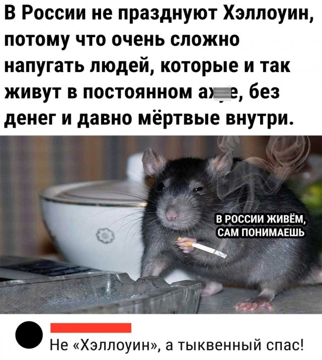 https://forumupload.ru/uploads/0019/3c/8c/2/915391.jpg