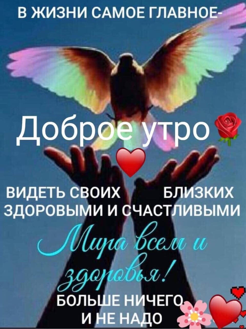 https://forumupload.ru/uploads/0019/3c/8c/804/632729.jpg