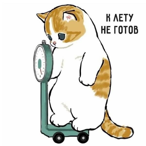 https://forumupload.ru/uploads/0019/82/12/16/t233598.jpg