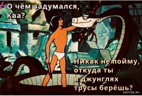 https://forumupload.ru/uploads/0019/82/12/369/t237156.jpg