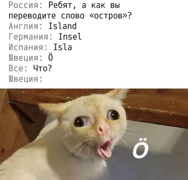 https://forumupload.ru/uploads/0019/82/12/369/t296142.jpg