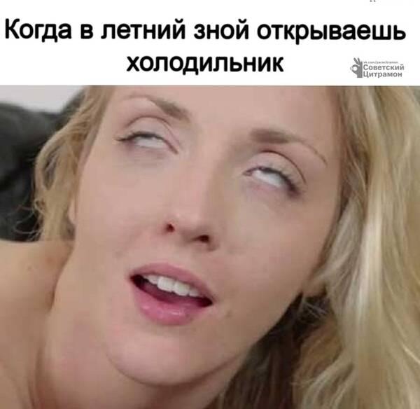 https://forumupload.ru/uploads/0019/82/12/369/t34063.jpg