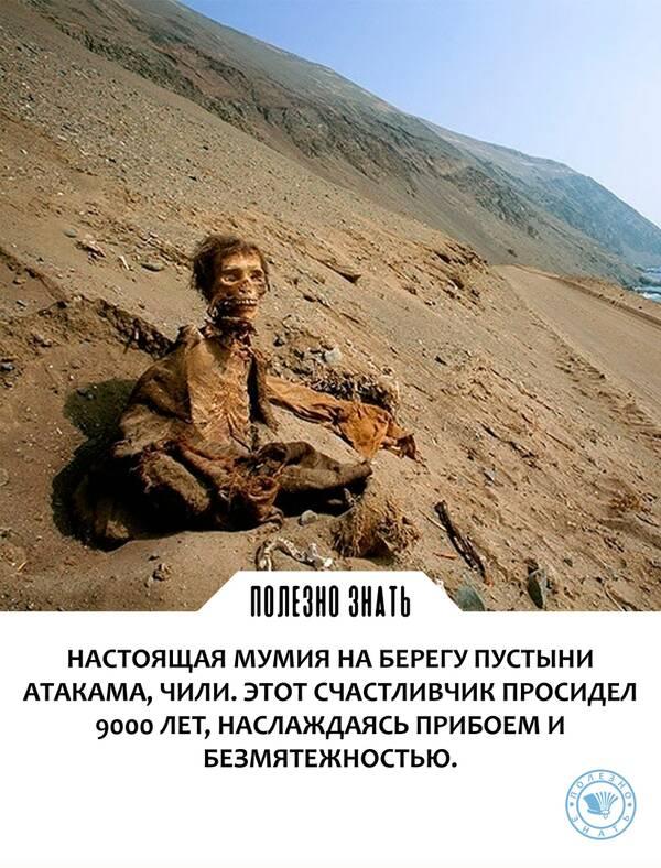 https://forumupload.ru/uploads/0019/82/12/369/t58323.jpg