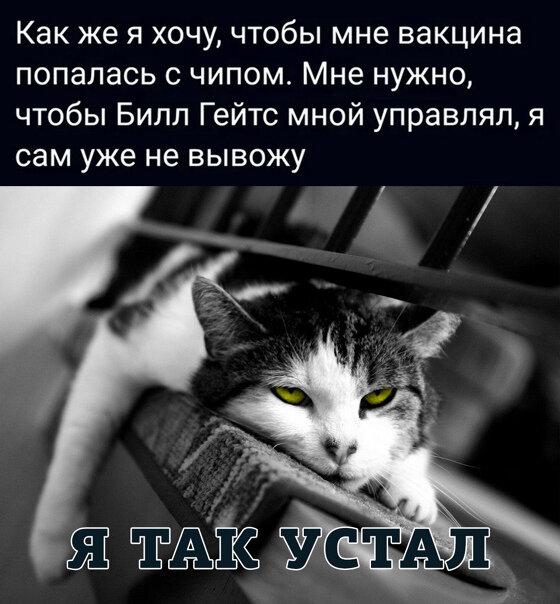 https://forumupload.ru/uploads/0019/82/12/5/t607419.jpg
