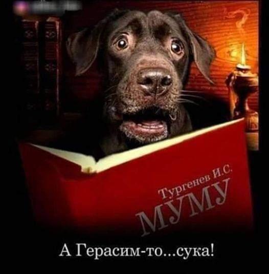 https://forumupload.ru/uploads/0019/82/12/5/t955161.jpg