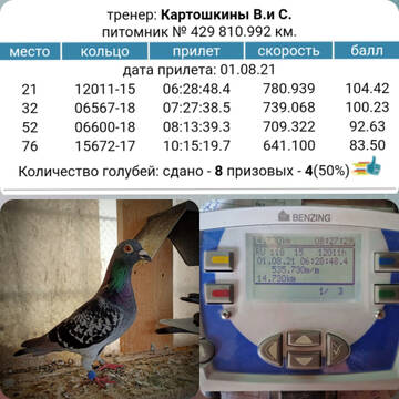 http://forumupload.ru/uploads/0019/8b/76/107/t518646.jpg