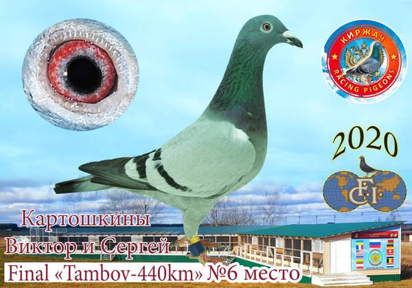 http://forumupload.ru/uploads/0019/8b/76/15/t39271.jpg