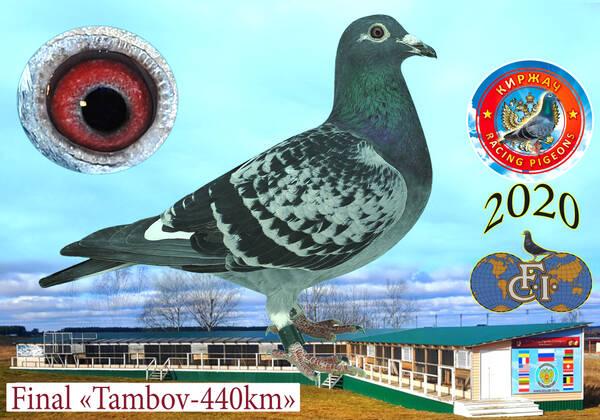 http://forumupload.ru/uploads/0019/8b/76/15/t594910.jpg