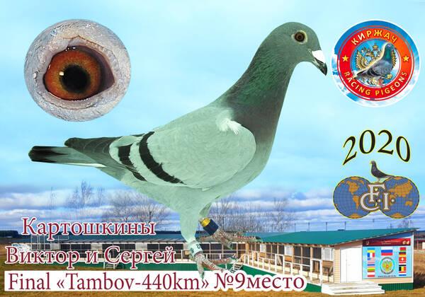 http://forumupload.ru/uploads/0019/8b/76/15/t973056.jpg