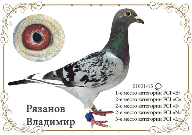 https://forumupload.ru/uploads/0019/8b/76/2/535144.jpg