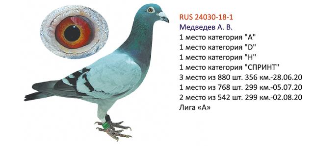 http://forumupload.ru/uploads/0019/8b/76/2/757710.png