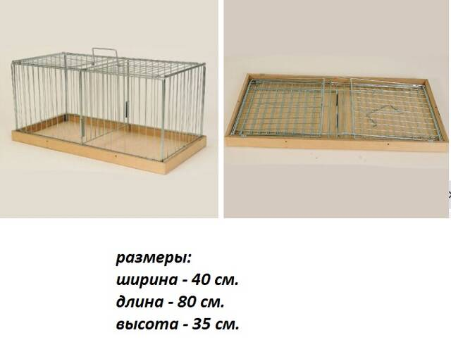 http://forumupload.ru/uploads/0019/8b/76/2/782574.jpg