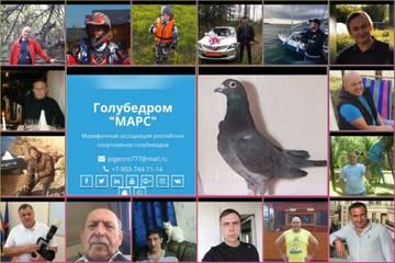 http://forumupload.ru/uploads/0019/8b/76/7/t469701.jpg