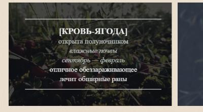 https://forumupload.ru/uploads/0019/c8/05/14/63159.jpg