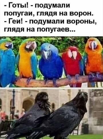 https://forumupload.ru/uploads/0019/f3/f4/245/t59898.jpg