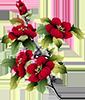 http://forumupload.ru/uploads/001a/04/99/2/t91459.png