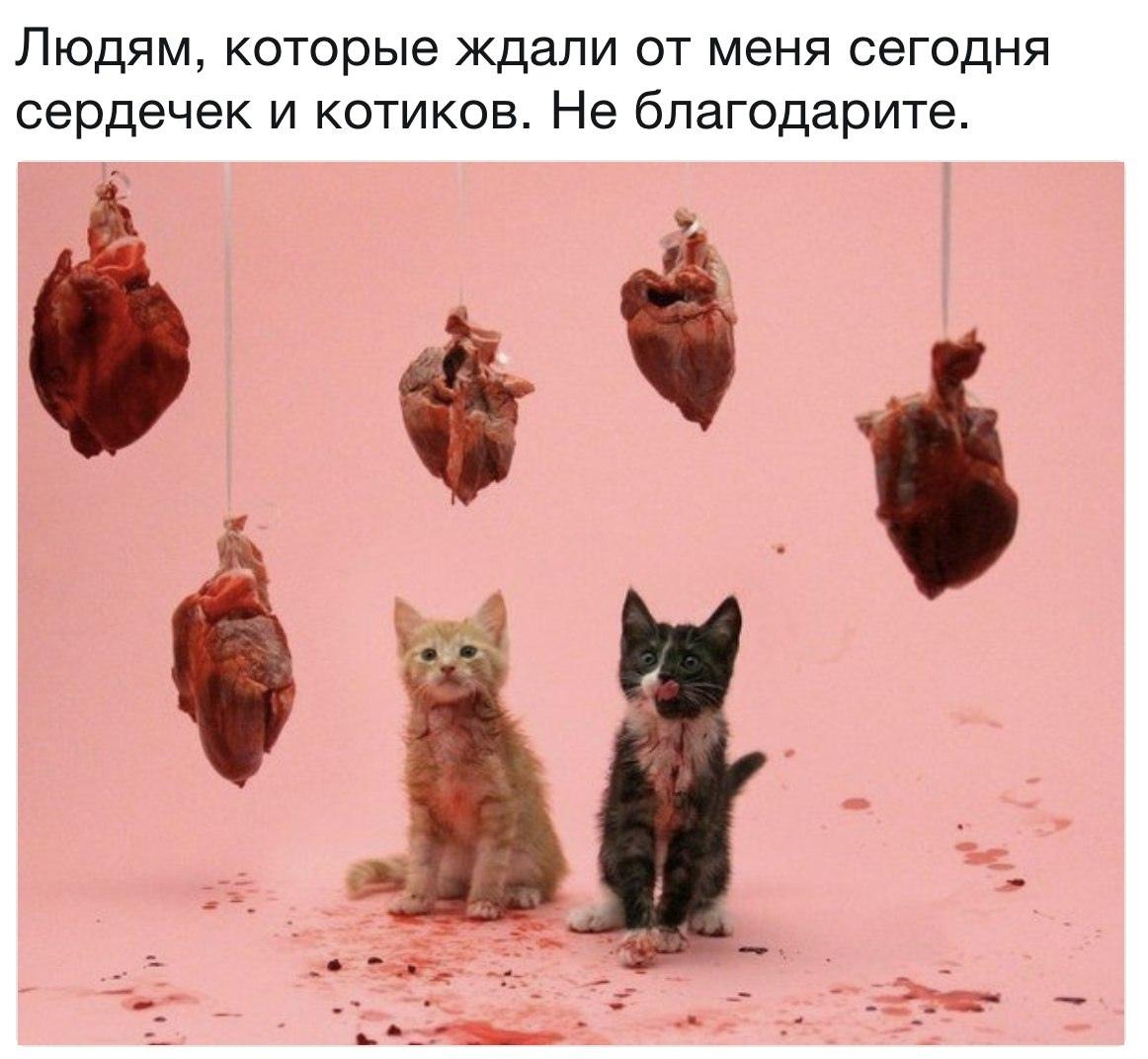 http://forumupload.ru/uploads/001a/1a/80/3/96106.jpg