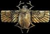 http://forumupload.ru/uploads/001a/2e/af/3/29739.png