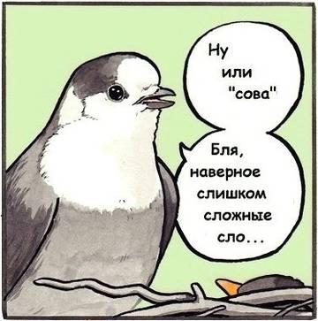 http://forumupload.ru/uploads/001a/74/14/113/t157757.jpg