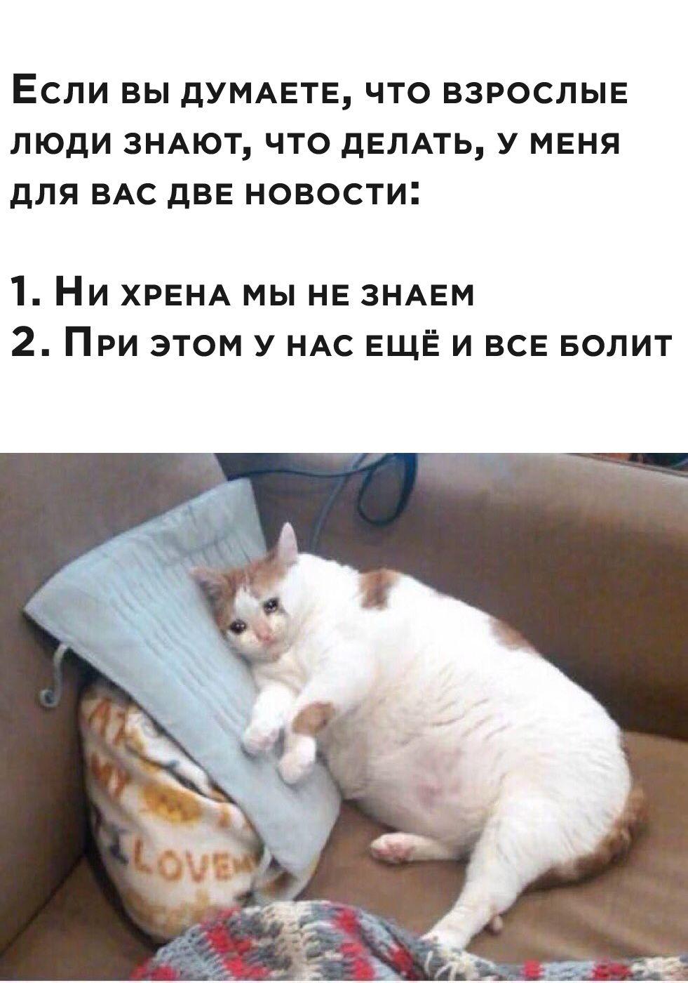 http://forumupload.ru/uploads/001a/74/14/129/485388.jpg