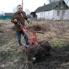 http://forumupload.ru/uploads/001a/81/1a/5/t55391.jpg