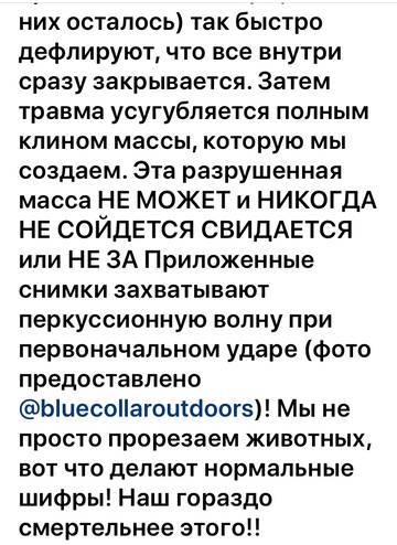 https://forumupload.ru/uploads/001a/8c/05/158/t393811.jpg