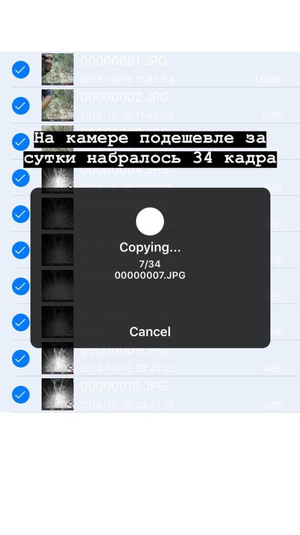 http://forumupload.ru/uploads/001a/8c/05/2/t17577.jpg