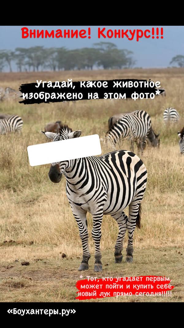 http://forumupload.ru/uploads/001a/8c/05/2/t189710.jpg