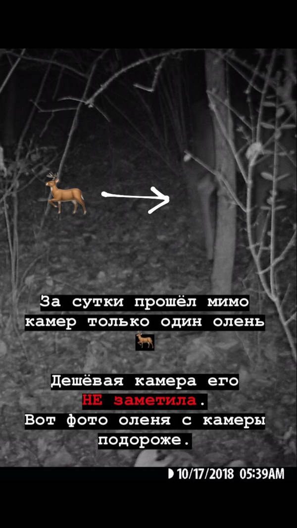 http://forumupload.ru/uploads/001a/8c/05/2/t23927.jpg