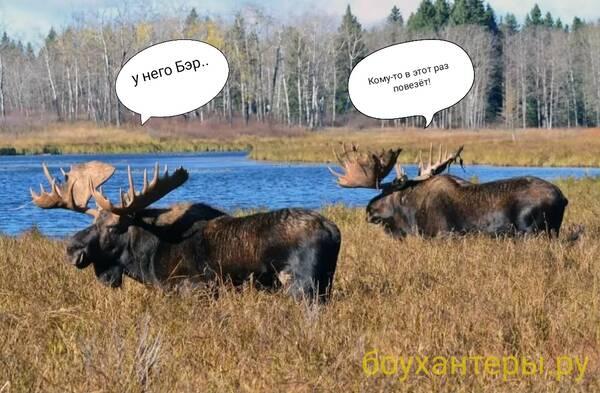 http://forumupload.ru/uploads/001a/8c/05/2/t272722.jpg