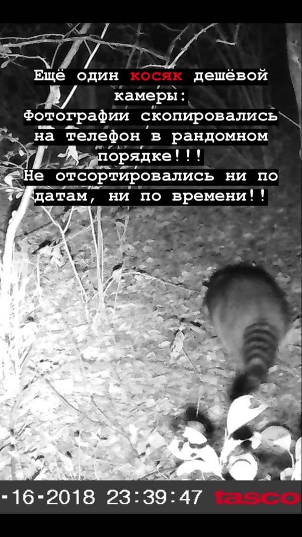 http://forumupload.ru/uploads/001a/8c/05/2/t33849.jpg