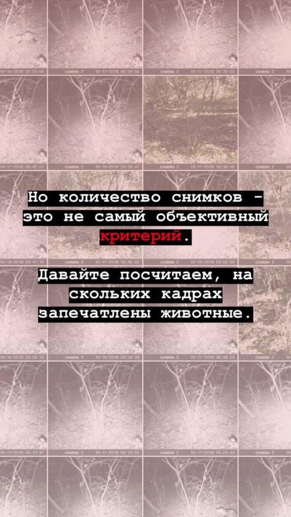 http://forumupload.ru/uploads/001a/8c/05/2/t35675.jpg