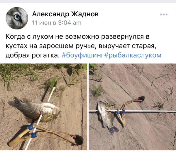 http://forumupload.ru/uploads/001a/8c/05/2/t573023.jpg