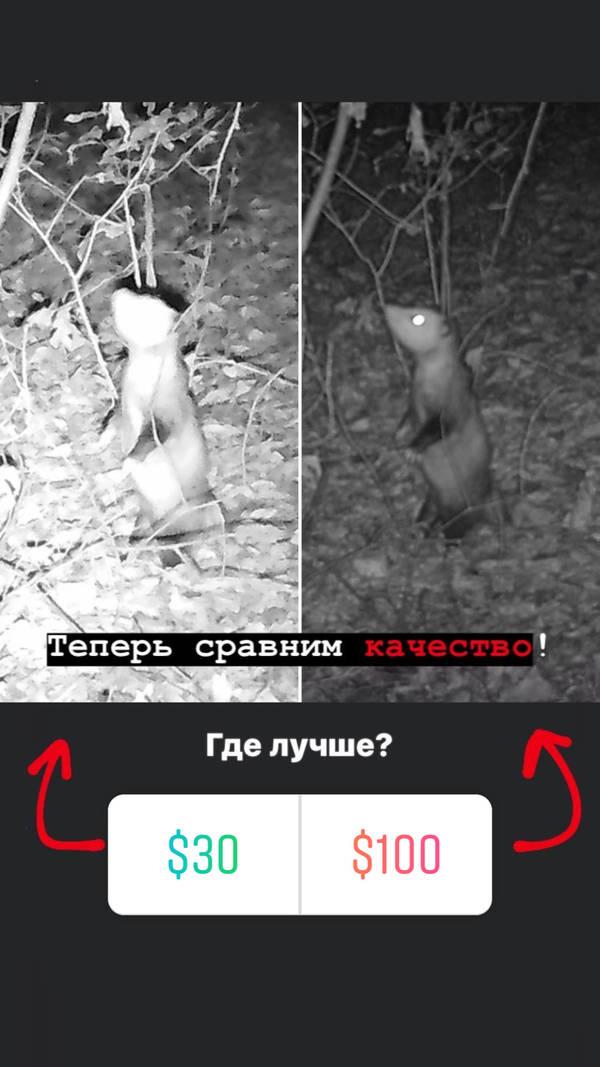 http://forumupload.ru/uploads/001a/8c/05/2/t74266.jpg