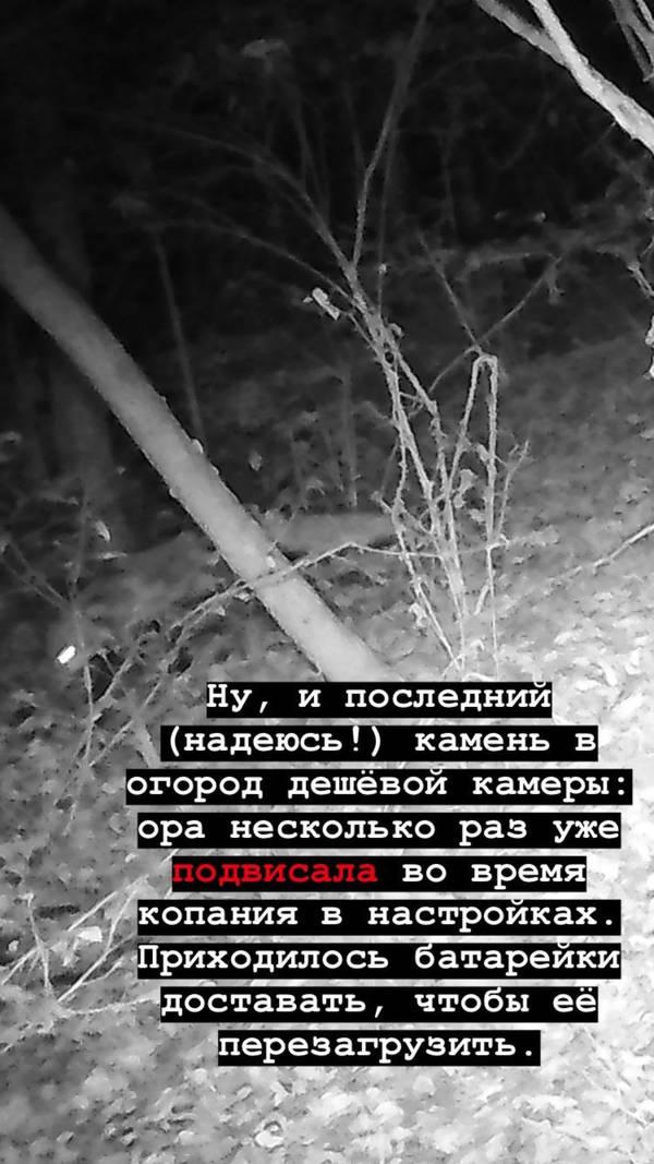 http://forumupload.ru/uploads/001a/8c/05/2/t77505.jpg