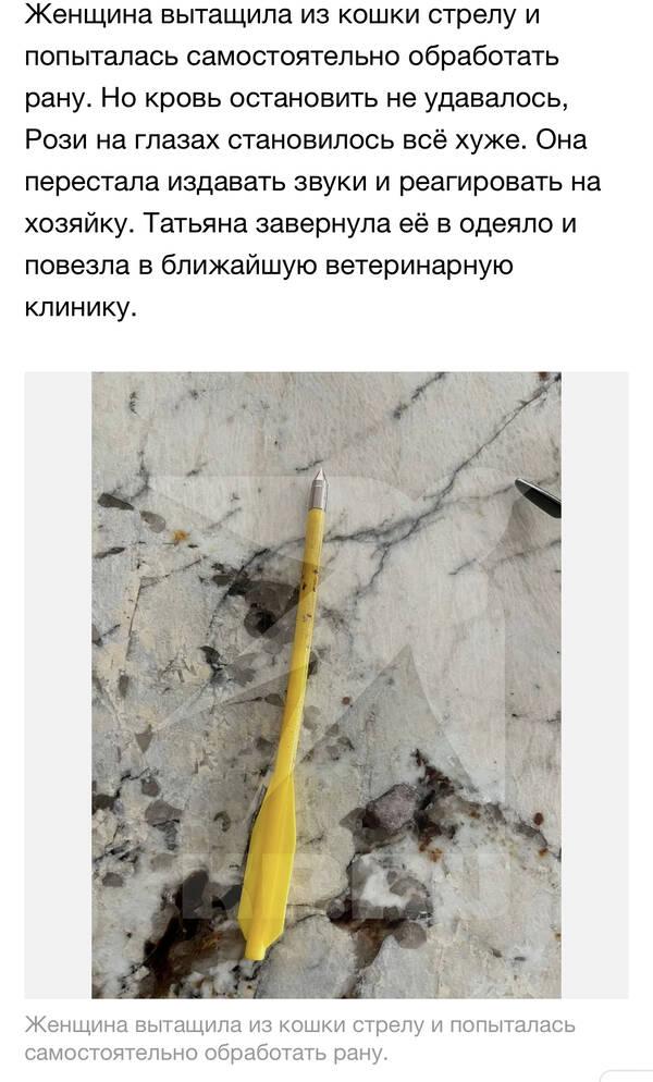 http://forumupload.ru/uploads/001a/8c/05/2/t811315.jpg