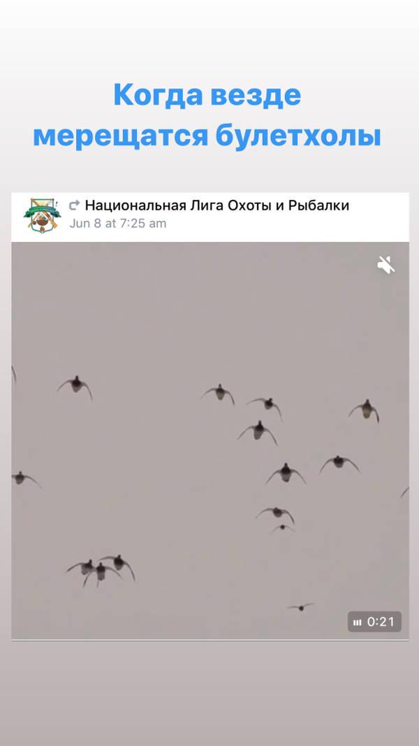 http://forumupload.ru/uploads/001a/8c/05/2/t936423.jpg