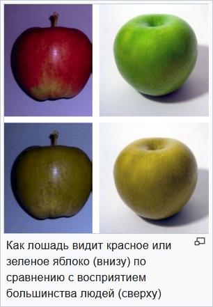 http://forumupload.ru/uploads/001a/8c/05/21/11235.jpg