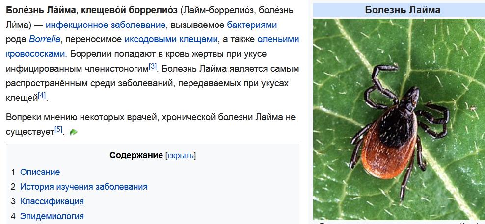 http://forumupload.ru/uploads/001a/8c/05/21/13396.png