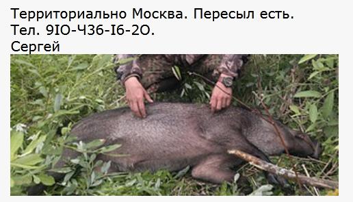 http://forumupload.ru/uploads/001a/8c/05/21/617803.png