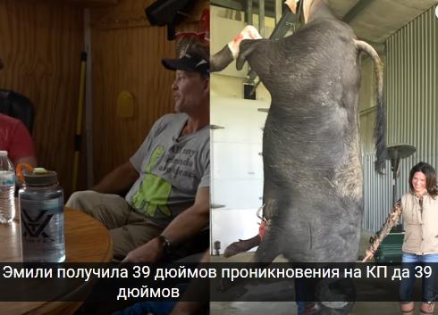 http://forumupload.ru/uploads/001a/8c/05/21/956621.png