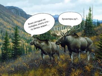 http://forumupload.ru/uploads/001a/8c/05/225/t626087.jpg