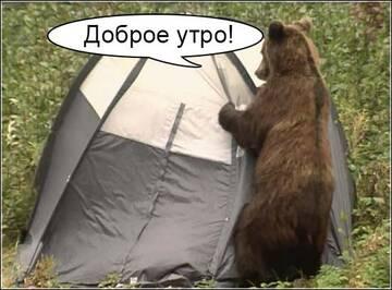 http://forumupload.ru/uploads/001a/8c/05/249/t548046.jpg