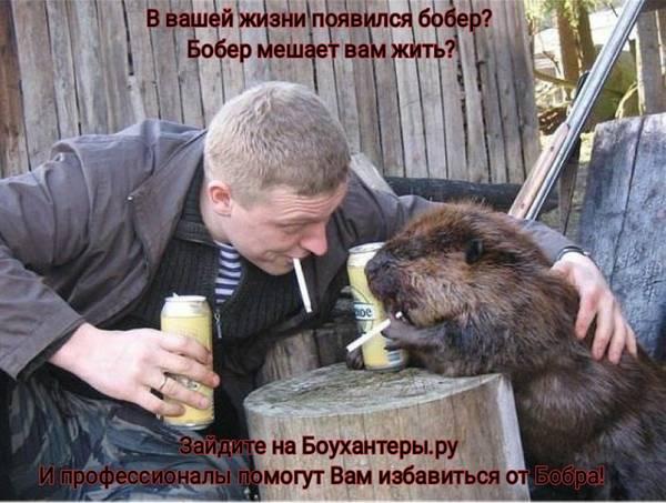 http://forumupload.ru/uploads/001a/8c/05/86/t66401.jpg