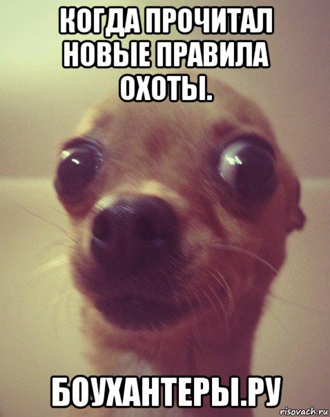 http://forumupload.ru/uploads/001a/8c/05/95/858608.jpg