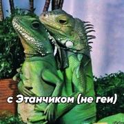http://forumupload.ru/uploads/001a/a3/fe/333/905398.png