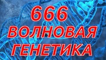 https://forumupload.ru/uploads/001a/aa/f8/2/t796018.jpg