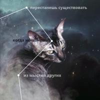 https://forumupload.ru/uploads/001a/ae/99/76/490840.png